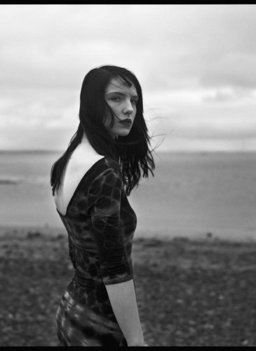 irish model