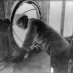 Umberto Nobile au décollage du Norge lors de la conquête du Pole Nord