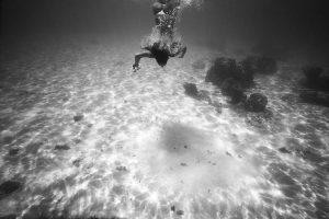 Découvrez un shooting photos sous leau made in Tahiti