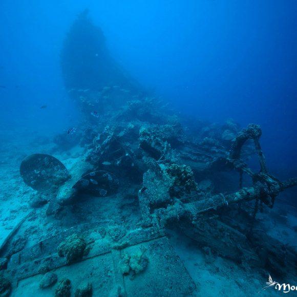 Plonger à Tahiti, site des 3 épaves : «la Goélette Orohena»