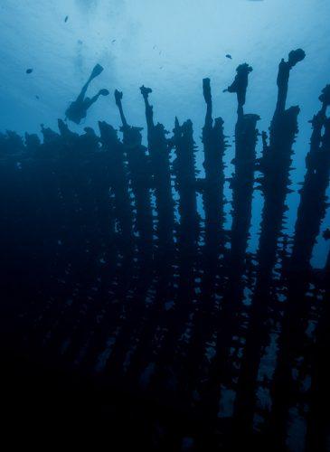 Goélette, site des 3 épaves Tahiti, la cale avant © Loïc Dorez
