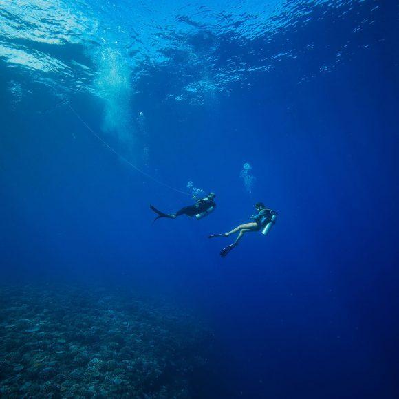 Tahiti : plongée à Papa-Wisky