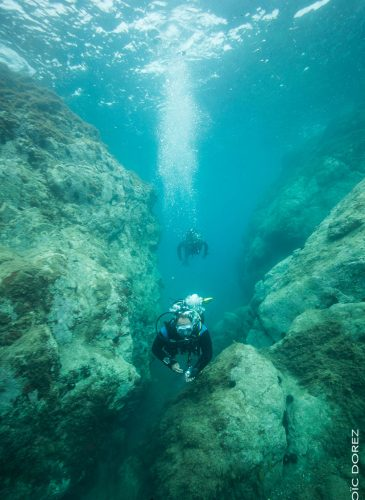 plonger réserve naturelle de Banyuls sur Mer